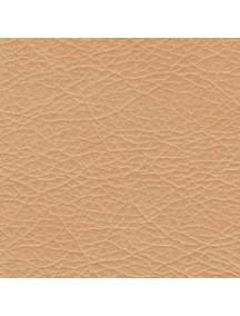 Gobeleno spalvynas (Dacota)